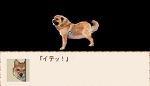 狂気-kyoki-