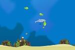 Dolphin Olympics2